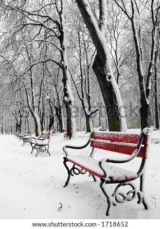 Red benches in a park covered with snow - stock photo
