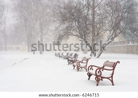 Red benches in row covered with snow. Snowing.