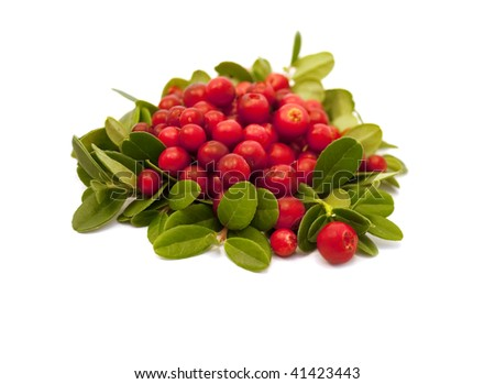Red berries isolated on white