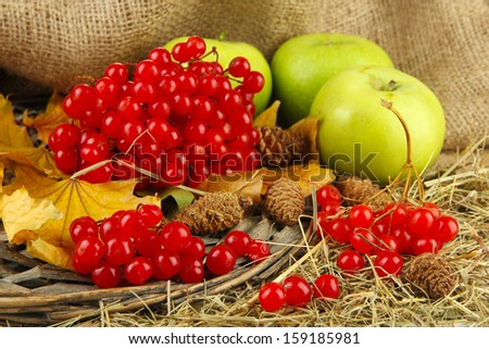 Red berries of viburnum on stand with apples on table on sackcloth background - stock photo