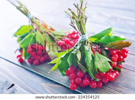 red berry - stock photo