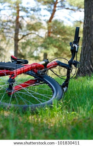 Red bike close-up lying on green grass against the background of nature in spring on a sunny day