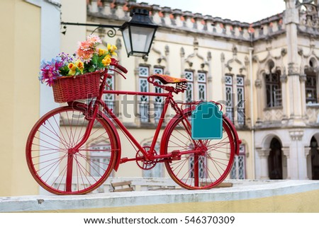 red bike with a basket full of colorful flowers and empty plate ready to be filled with some text
