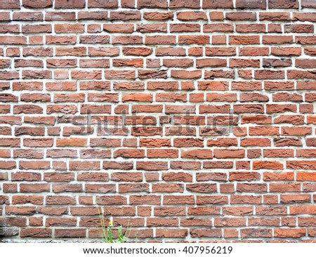 Red brick wall background. Brick wall with copy space. Stone texture - stock photo