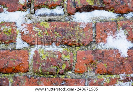 red bricks with moss and snow - stock photo