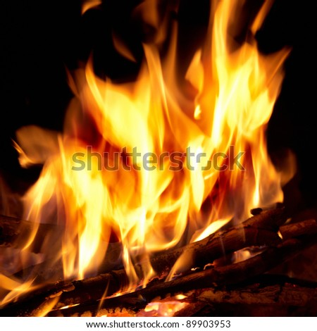 Red bright campfire with the black background - stock photo