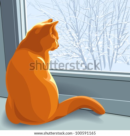 red british cat sits on the windowsill in the winter and looking out the window at the snow-covered trees - stock photo
