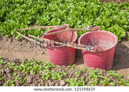 red bucket container for water and organic fertilizer in the garden - stock photo