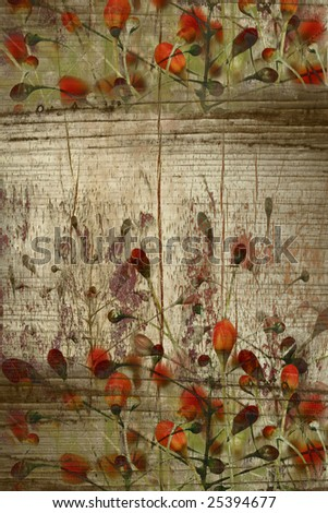 red bud on wood grunge background with text or banner space
