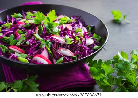 red cabbage, radish and spring onion salad on dark background - stock photo