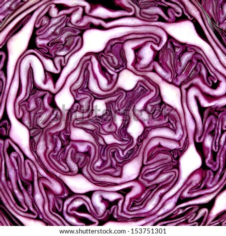 Red cabbage texture - stock photo