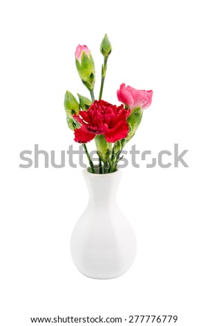 Red carnation in vase isolated on white background - stock photo