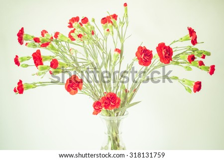 red carnations in a vase on a white background - stock photo