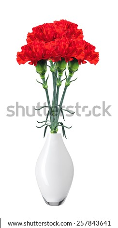 Red carnations in vase isolated on white - stock photo