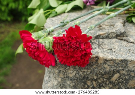 Red carnations on the gravestone - stock photo