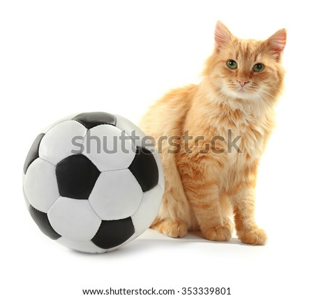 Red cat with football ball isolated on white background
