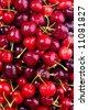Red cherries, with water droplets. - stock photo