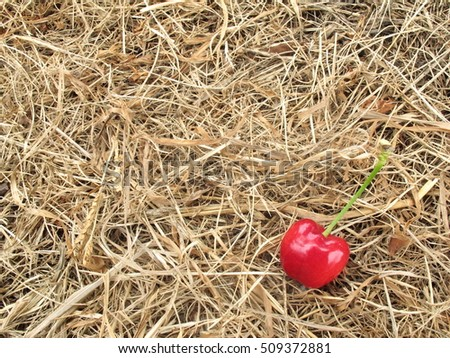 red cherry on brown straw hay for background