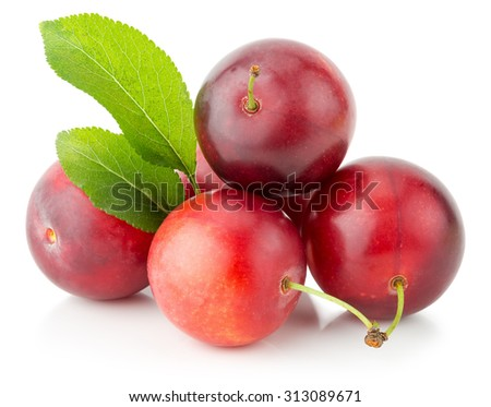 red cherry plums isolated on the white background