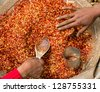 Red Chili pepper powder with seeds. Woman's hands in motion are filled into jars pepper - stock photo