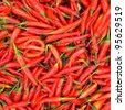 red chilli background - stock photo