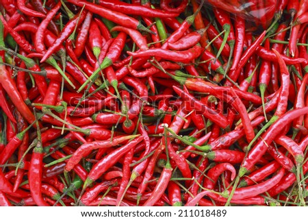 Red chillies in market - stock photo