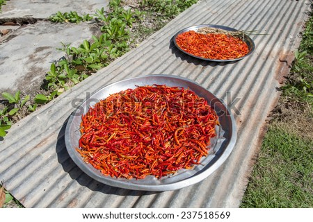 Red chillies on the aluminum tray - stock photo