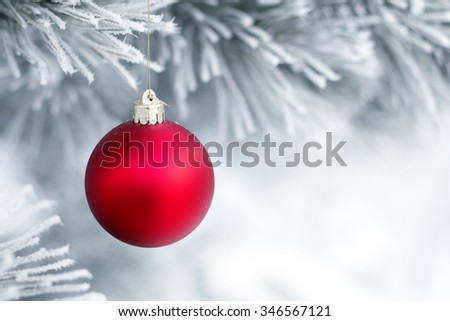 Red Christmas balls on a pine branch covered with frost. Christmas card. Space for text.