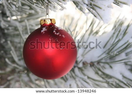 Red Christmas Ornament In Snowy Pine Tree - stock photo
