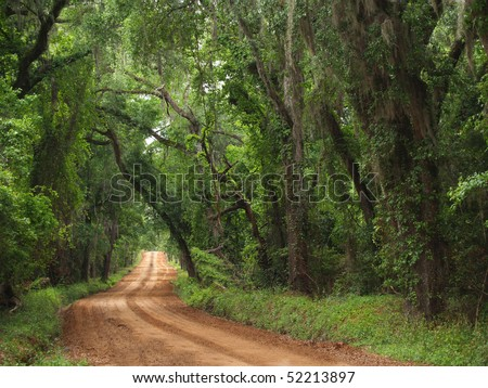 Red clay plantation country road lined with a canopy of trees and Spanish moss including live oaks in the south Georgia, north Florida area during late spring or early summer time. - stock photo