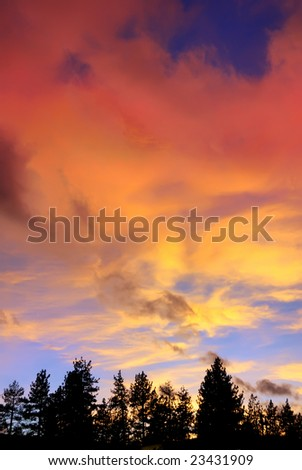 red clouds at sunset above tree silhouettes on the Lake Tahoe California - stock photo