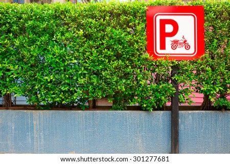 Red Color Motorbikes Parking with empty space on the left side of small tree background - stock photo