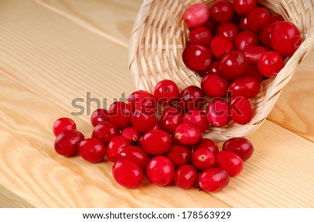 red cranberries and basket - stock photo