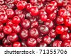 red cranberries close-up  with selective focus - stock photo