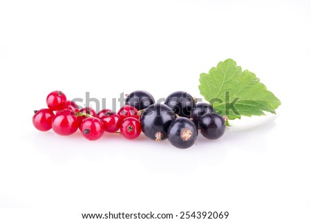 red currant and black currant on a white background closeup - stock photo