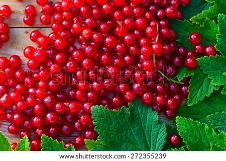red currant and green leaves on  old wooden table - stock photo