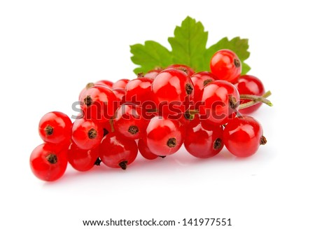 Red Currant close up isolated on white - stock photo