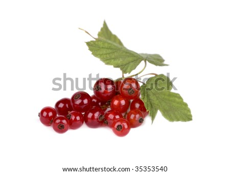 Red currant with green leaves isolated on white background - stock photo