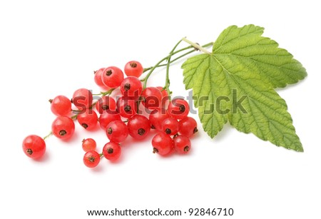 Red currant with leaves - stock photo