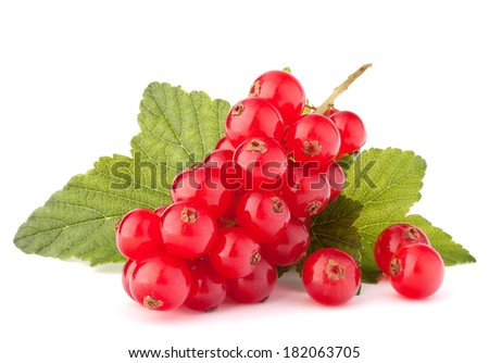 Red currants and green leaves still life isolated on white background cutout - stock photo