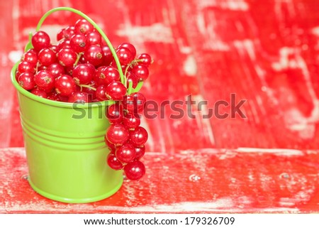 Red currants. Fresh harvested red currants  in small bucket. Macro, selective focus - stock photo