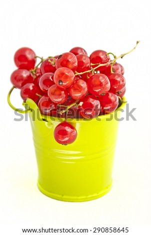 red currants in a bucket isolated on  white background