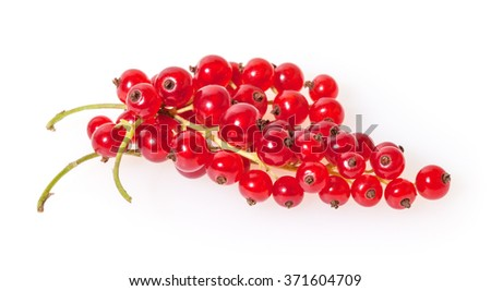 Red currants isolated on white background  - stock photo