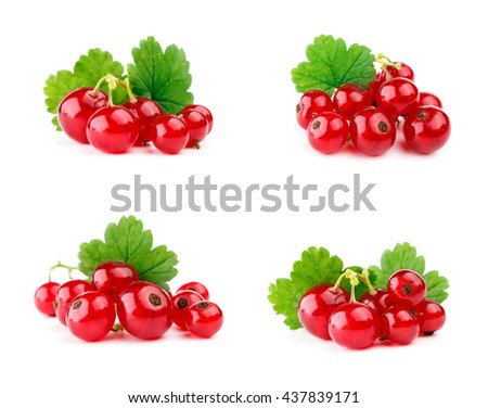 Red currants with leaf isolated on white. Set. - stock photo