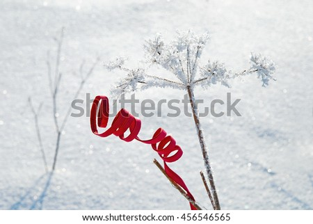 Red decorative element on the snow field