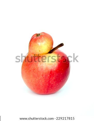 Red double Conjoined apple on white background - stock photo