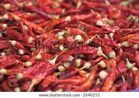 red dried chili peppers - stock photo