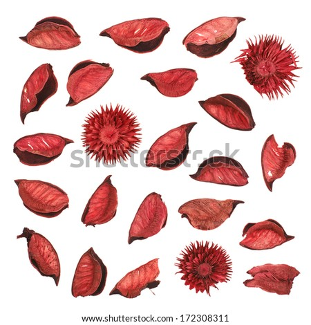 Red dried flower leaves potpourri isolated over white background - stock photo