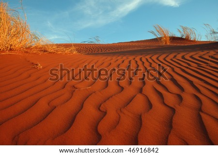 Red Dune in the evening sun. Namibia