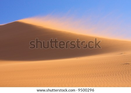 Red Dune in the Wind - stock photo